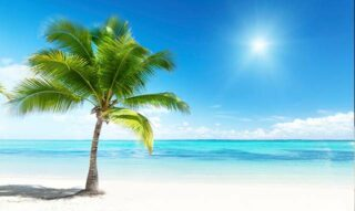 COMBINE YOUR SPANISH LEARNING WITH AN AMAZING VACATION